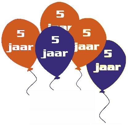 Repair Café Delft viert feest
